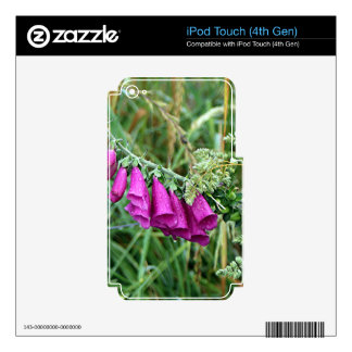 Deep pink purple foxglove on El Camino, Spain Decal For iPod Touch 4G