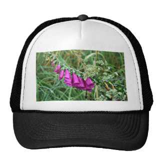 Deep pink purple foxglove on El Camino, Spain Trucker Hat