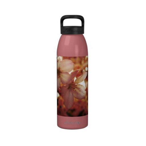 Deep Pink Reusable Water Bottles