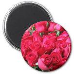 Deep Pink Rose Bouquet Magnet