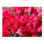 Deep Pink Rose Bouquet Post Card