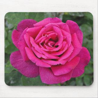 Deep pink single rose mouse pad