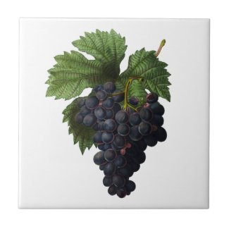 Deep Purple Grapes Redoute Ceramic Tile