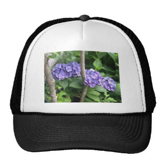 Deep Purple Hydrangeas Trucker Hat