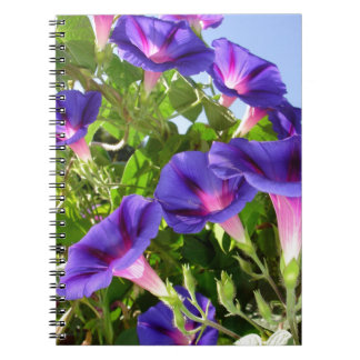 Deep Purple Morning Glory Climbing Plant Notebook