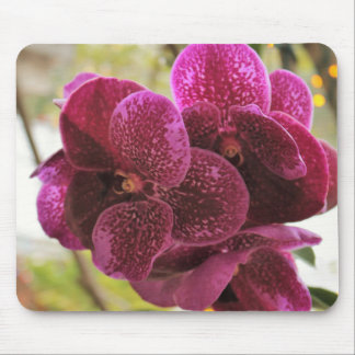 Deep Purple Orchid Mousepad III