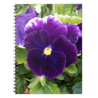 Deep Purple Pansies On Bush, Notebook