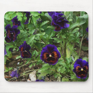 Deep Purple Pansy ~Mouse Pad~ Mouse Pad