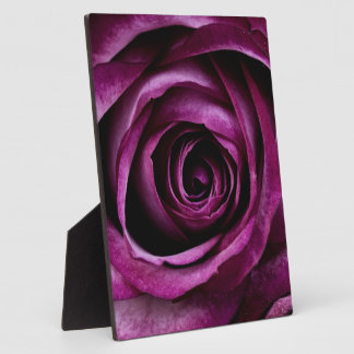 Deep Purple Rose Plaque