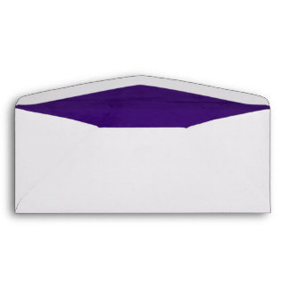 Deep Purple Velvet Textured Lining 10 Envelope