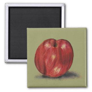 Deep Red Apple Magnet