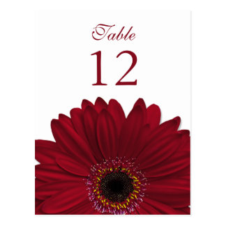 Deep Red Gerbera Daisy Table Number Card Flat Postcard