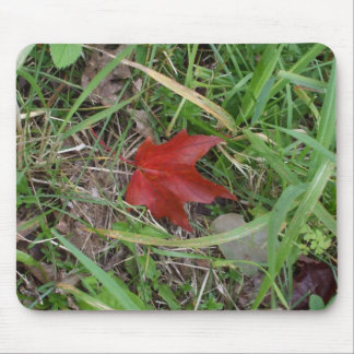 Deep Red Leaf on Grass Mouse Pad