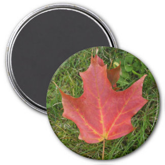 Deep Red Maple leaf-Canada Day Magnet