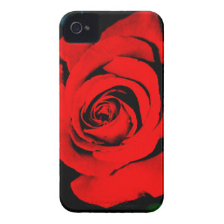Deep Red Rose iPhone 4 Cover