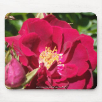 Deep Red Rose Mouse Pads