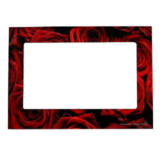 Deep Red Roses Magnetic Photo Frames