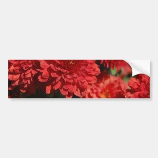 Deep Red Serenity Car Bumper Sticker