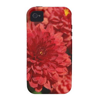 Deep Red Serenity Case-Mate iPhone 4 Covers