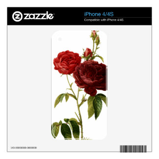 Deep red vintage roses painting skins for the iPhone 4