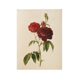 Deep red vintage roses painting wood poster