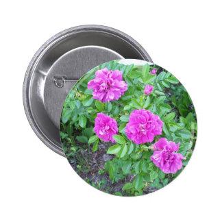 Deep Rose Flower Button