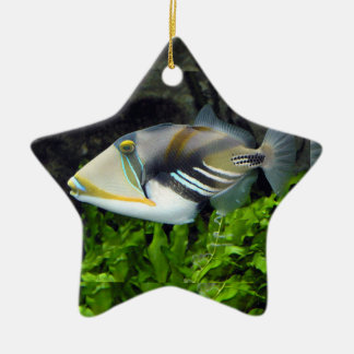 Deep sea fish Double-Sided star ceramic christmas ornament