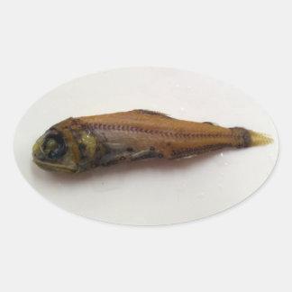 Deep Sea Lantern Fish Oval Sticker