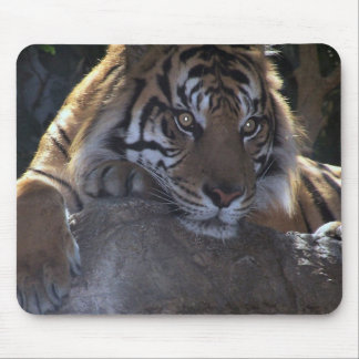 Deep Thought Mouse Pad