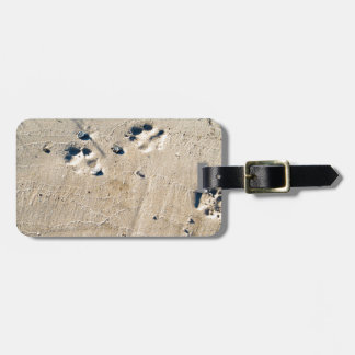 Deep traces of a large dog on the sand luggage tag