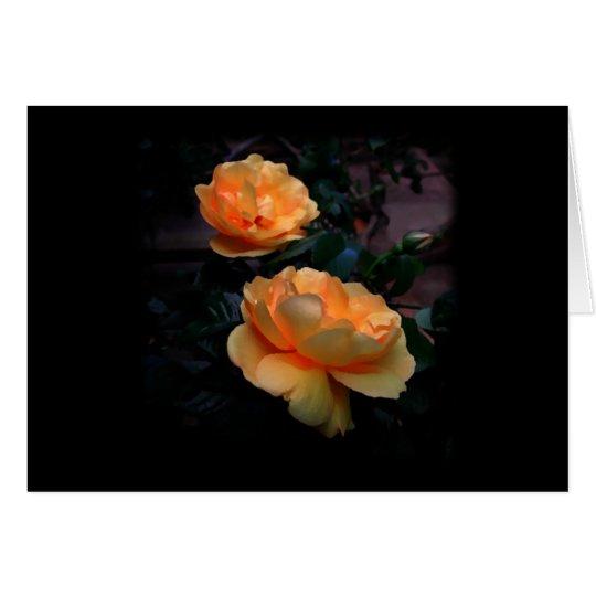 Deep Yellow - Orange Roses, on Black. Custom Card