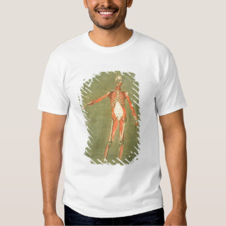 Deeper Muscular System of the Front of the Body, p T-Shirt