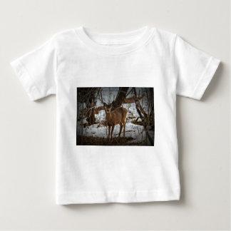 Deer_0373v