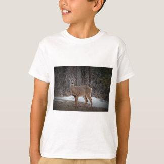 Deer_0394v