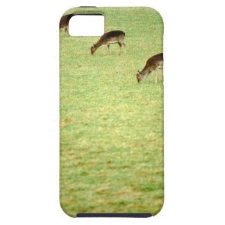 deer 2 iPhone SE/5/5s case