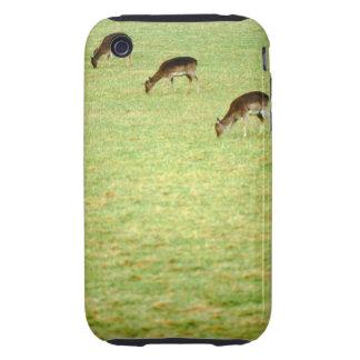 deer 2 tough iPhone 3 case