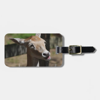 deer-73.jpg tags for bags