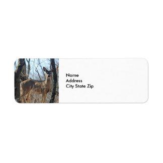Deer 784 label