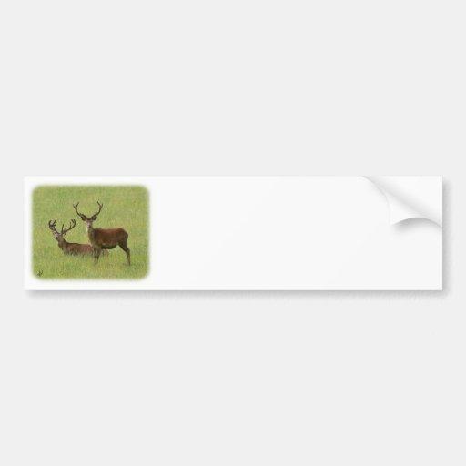 Deer 9Y413D-023 Bumper Sticker
