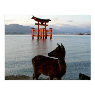 Deer and Big Red Gate at Miyajima in Japan Postcard