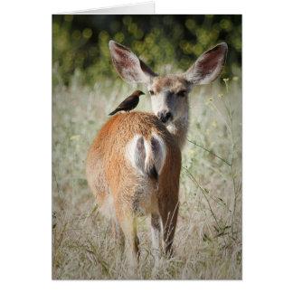 Deer and Bird Greeting Card