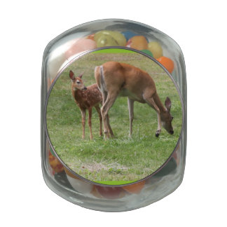 Deer and Fawn Candy Jar Glass Candy Jar
