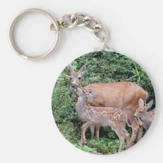 Deer and Fawns Keychain
