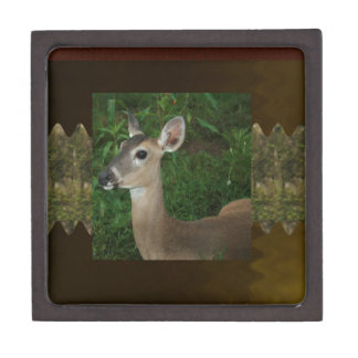 Deer Animal Mammal Zoo Farmer Jungle Wild Park fun Premium Keepsake Boxes