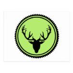 Deer antlers elk post cards