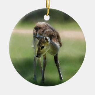 Deer are so sweet ceramic ornament