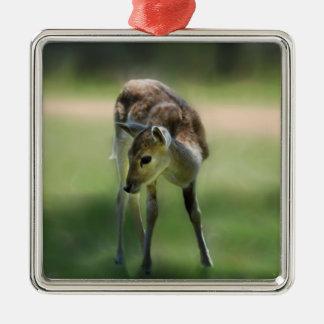 Deer are so sweet metal ornament
