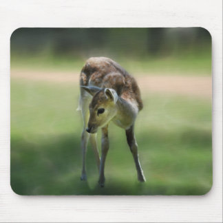 Deer are so sweet mouse pad