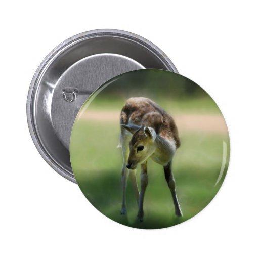 Deer are so sweet pin