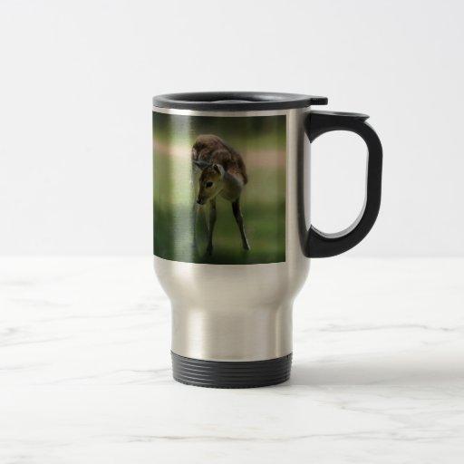 Deer are so sweet travel mug